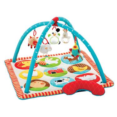 Baby Play Gym Comparison Healthy Mama Blog